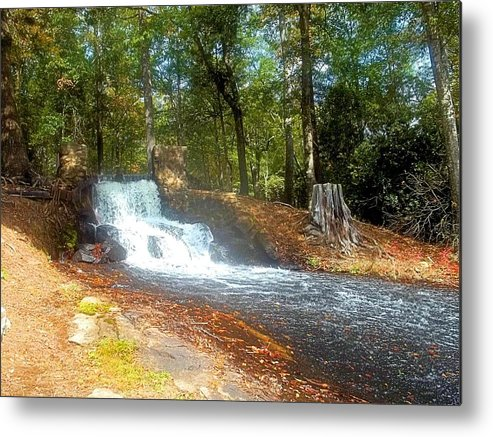 Forest Metal Print featuring the photograph Serenity Creek by James Potts