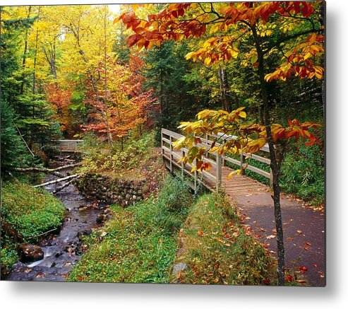 Autumn Metal Print featuring the photograph There Is A Harmony In Autumn by Lori Strock