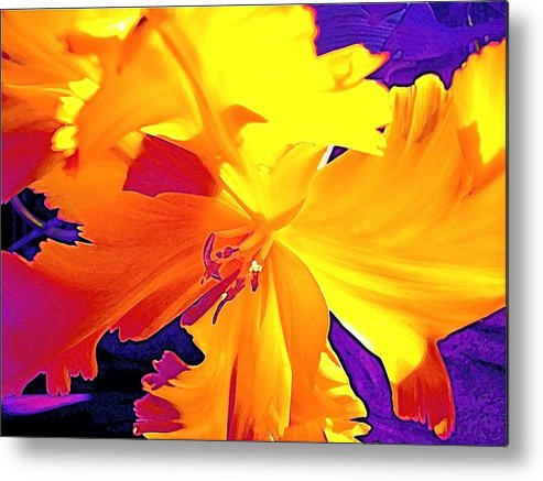 Flower Metal Print featuring the photograph Tulip 6 by Pamela Cooper