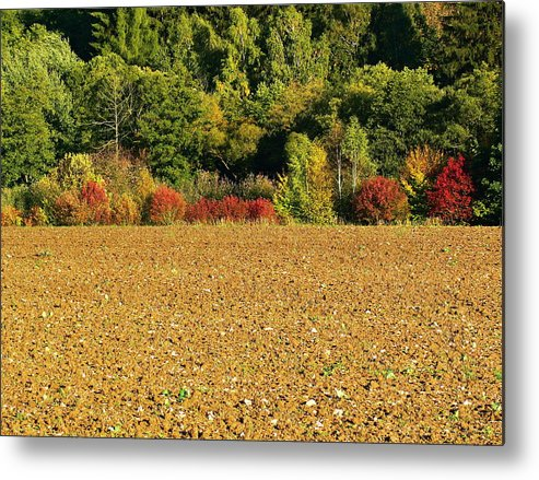 Field Metal Print featuring the photograph colors of Autumn by Pavel Jankasek