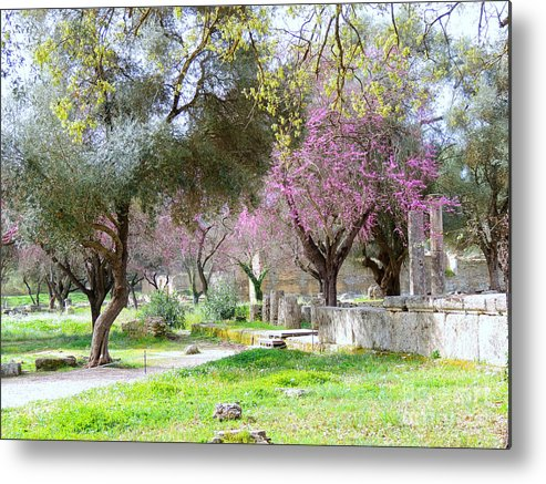Greece Metal Print featuring the photograph Olympia Greece by Paul Sandilands