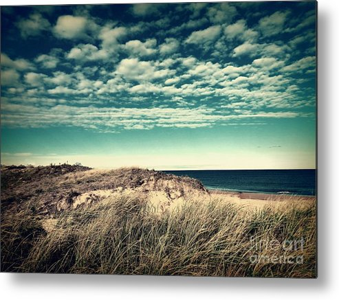 Marcia Lee Jones Metal Print featuring the photograph A Day Of Bliss by Marcia Lee Jones