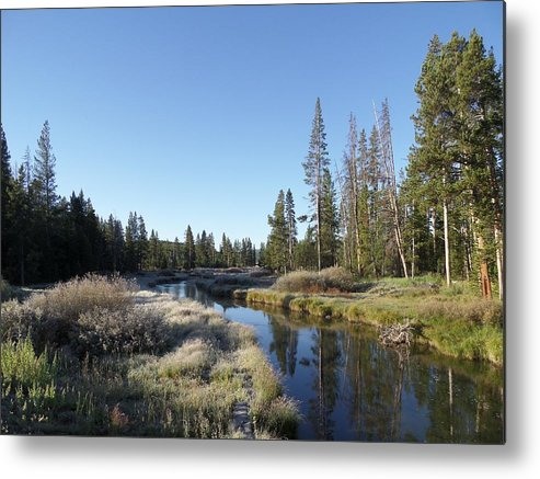 Blue Metal Print featuring the photograph A Frosty Morning Along Obsidian Creek by Frank Madia