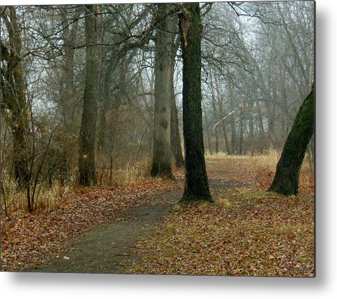 Autumn Metal Print featuring the photograph A Wandering by Wild Thing