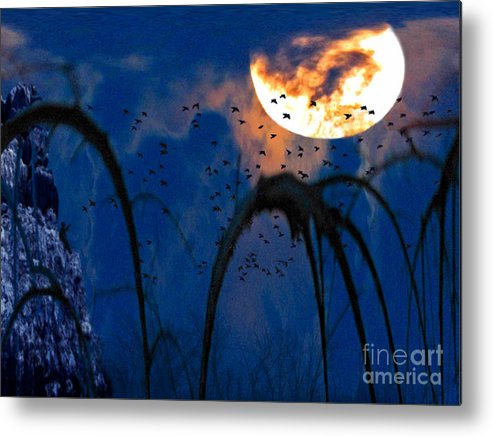 Winter Landscape Metal Print featuring the photograph A Winter's Moon 3 by Cedric Hampton