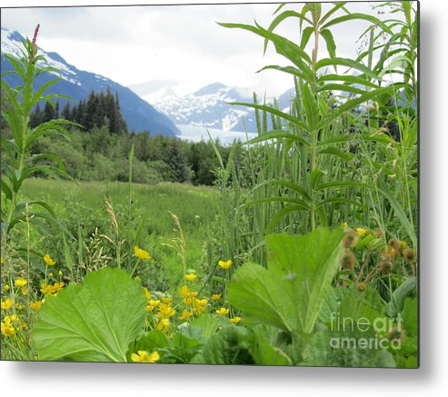 Alaska Metal Print featuring the photograph Alaskan Glacier Beauty by Donna Jackson