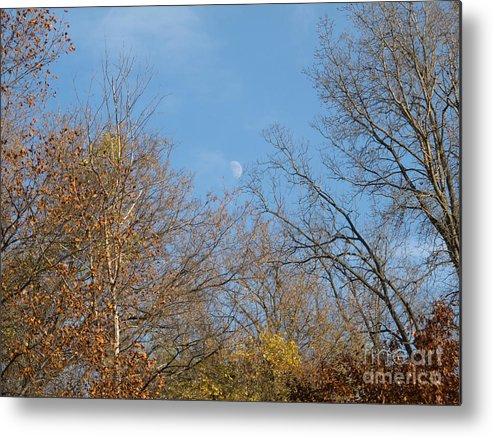 Moon Metal Print featuring the photograph Autumn Moonrise by Ann Horn
