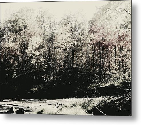 Landscape Metal Print featuring the photograph Banning State Park by Sarah Marie Hiemstra