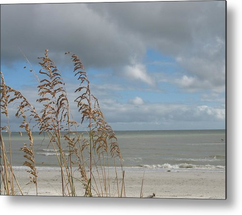 Beach Metal Print featuring the photograph Beachview With Seaoat by Christiane Schulze Art And Photography