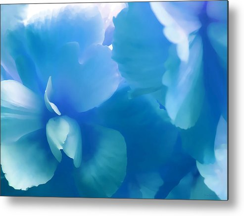 Begonia Metal Print featuring the photograph Blue Melody Begonia Floral by Jennie Marie Schell