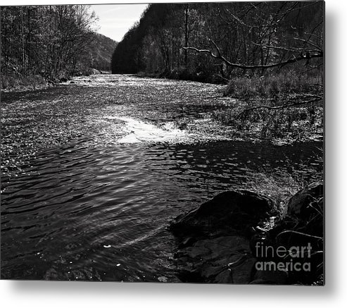 Landscape Metal Print featuring the photograph Broad River 5 by Earl Johnson