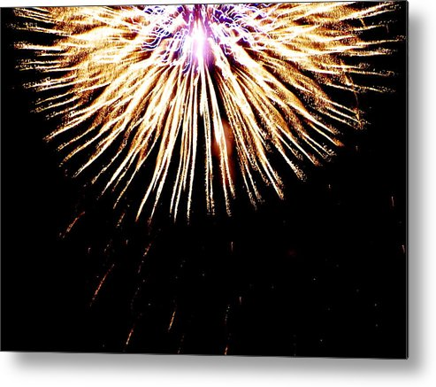 Metal Print featuring the photograph Bursting by Heather Farr