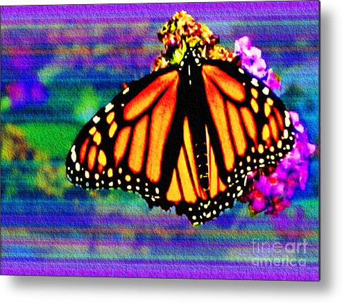 Butterfly Metal Print featuring the photograph Monarch Butterfly by Carol F Austin