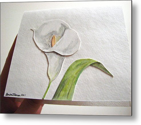 Callalily Metal Print featuring the mixed media Callalilly Card - Image Two by Sandy Tolman