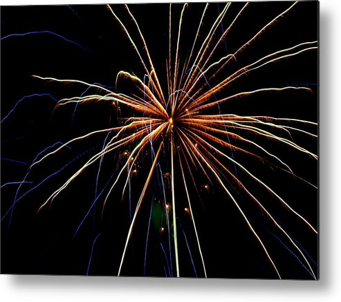 Metal Print featuring the photograph Colors Bursting by Heather Farr