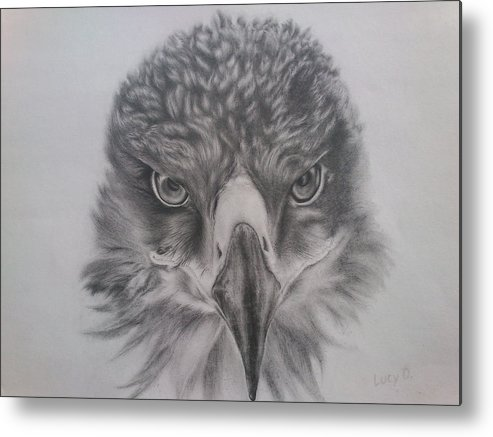 Eagle Metal Print featuring the drawing Eagle by Lucy D