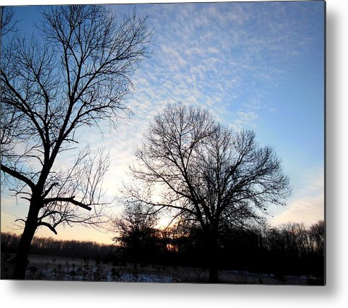 Spring Metal Print featuring the photograph Reduced Edge Of Morning by Wild Thing
