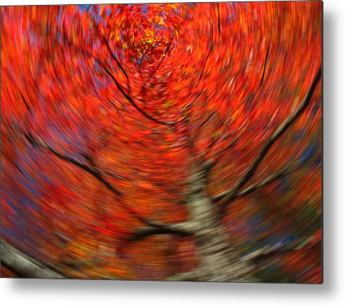 Intentional Camera Movement Metal Print featuring the photograph Fall Tree Carousel by Juergen Roth