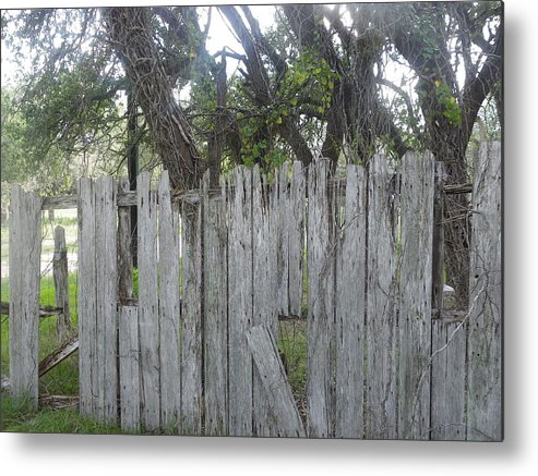 Metal Print featuring the photograph Fence by Kit Meitinger