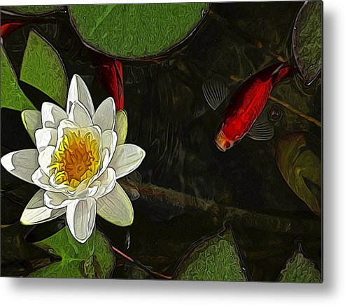 Water Garden Metal Print featuring the photograph Flying Fish by Jen Brooks Art