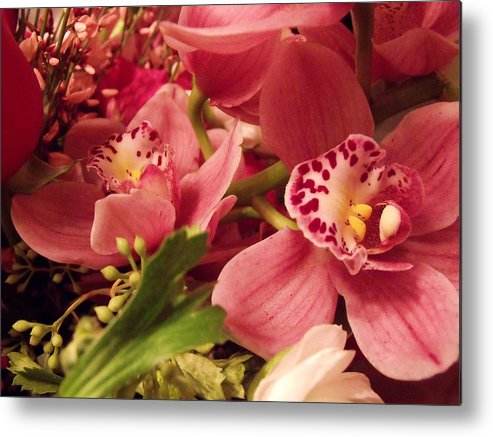 Flowers Metal Print featuring the photograph For Mom by Dave Dresser