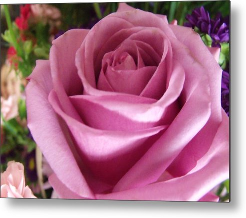 Pink Rose Metal Print featuring the photograph For You Mom by Dave Dresser