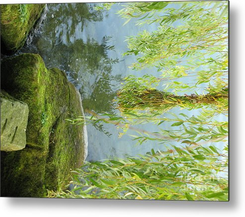See Metal Print featuring the photograph Gezaehmte Frisur by Dieter Frank
