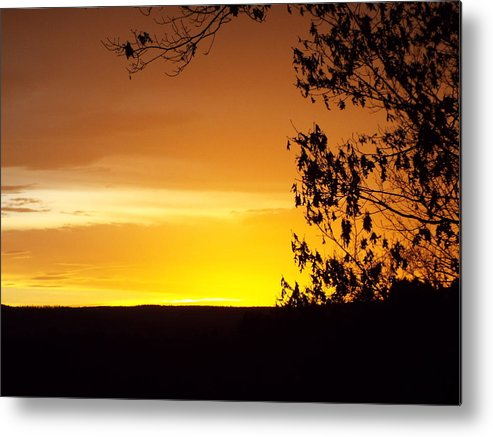 Sunset Photographs Metal Print featuring the photograph Golden Sunset by Cheryl King