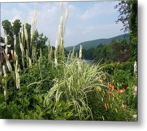 Grasses Metal Print featuring the photograph Garden Over A River by Catherine Gagne