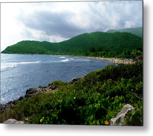 Beach Metal Print featuring the photograph Green With Envy by Brittani Rawlins