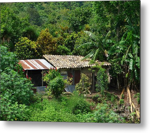 House Metal Print featuring the photograph In The Jungle House by Lew Davis