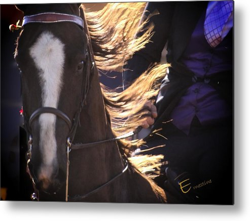 Equine Art Prints For Sale Metal Print featuring the mixed media Inner Music by Ernestine Manowarda