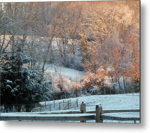 Snow Metal Print featuring the photograph It's A Beautiful Morning by Rabiah Seminole
