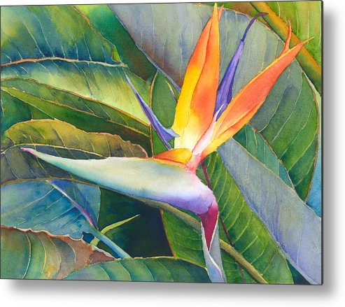 Bird Of Paradise Metal Print featuring the painting Its A Bird by Judy Mercer