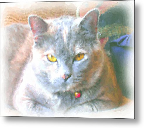 Cat Metal Print featuring the mixed media K C by Dusty Reed