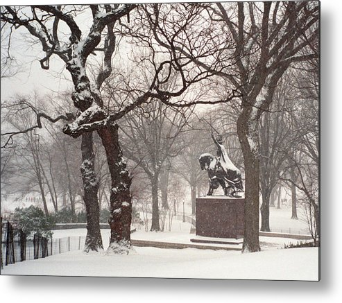 Central Park Metal Print featuring the photograph King Jagiello In A Blizzard by Cornelis Verwaal