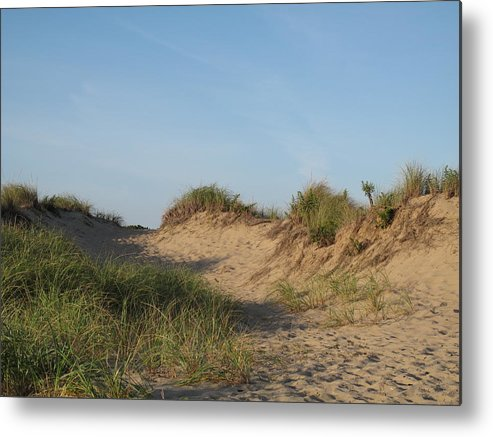 Landscape Metal Print featuring the photograph Lieutenant Island Dunes by Barbara McDevitt