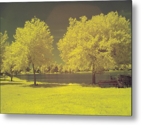 Ir Metal Print featuring the photograph Lodge Lake 2 by Larry Wilkerson
