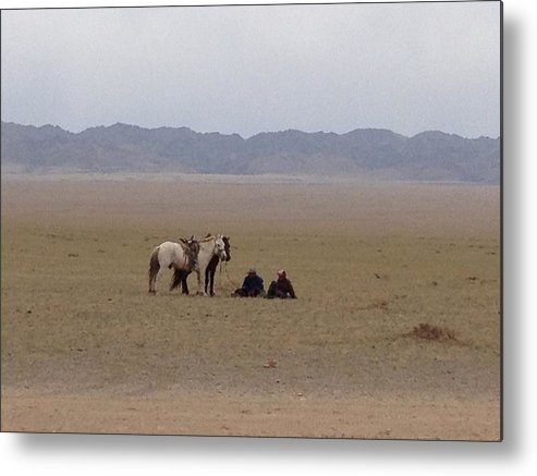 Mongolia Metal Print featuring the photograph Mongolia Horses by Michelle Hynes