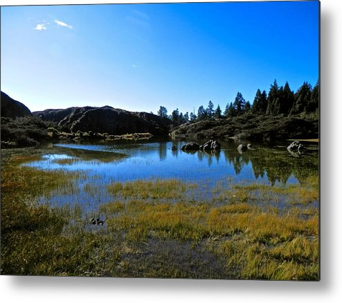 Beautiful Metal Print featuring the photograph Mountain Marshes 2 by Joe Wyman