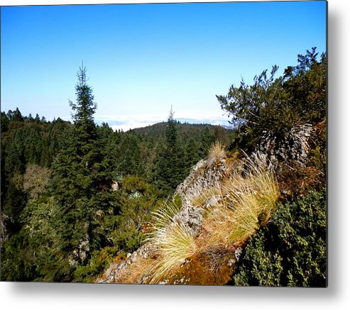 Cool Metal Print featuring the photograph Mountain View by Joe Wyman
