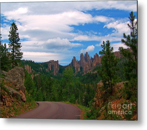 Black Hills Metal Print featuring the photograph Needles by Mary and Curt Johnston