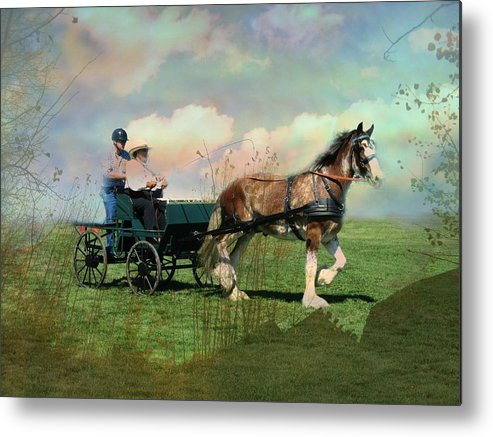 Horse Metal Print featuring the photograph Out For A Trot by Shirley Sirois