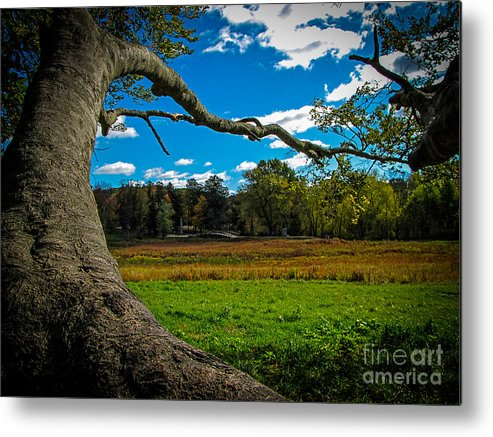 Fall Metal Print featuring the photograph Park In Massachusetts In The Fall by Charlene Gauld