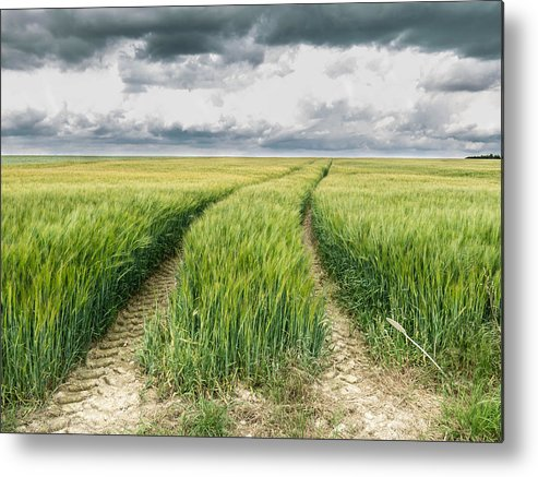 Path Metal Print featuring the photograph Path To Nowhere by Tino Lopes