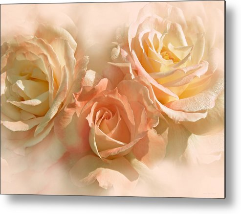 Rose Metal Print featuring the photograph Peach Roses In The Mist by Jennie Marie Schell