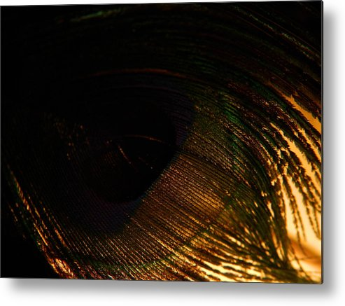Macro Metal Print featuring the photograph Protection by Tara Miller