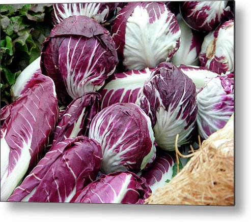 Italian Chicory Metal Print featuring the photograph Radicchio Lettuces by Tony Craddock/science Photo Library