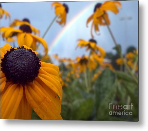 Rainbow Metal Print featuring the photograph Rainbow by Crissy Boss