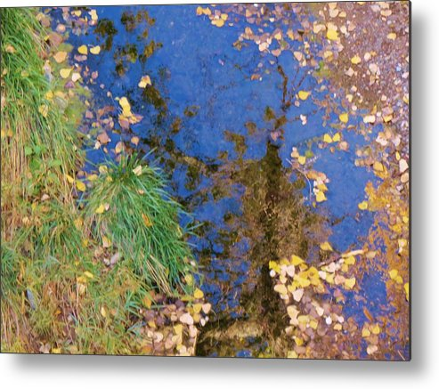Fall Metal Print featuring the photograph Reflections Of Fall by Feva Fotos